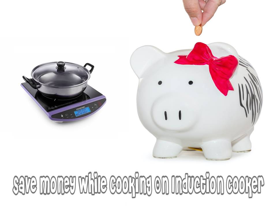 it is a better option to use induction stove power over gas for saving money while cooking