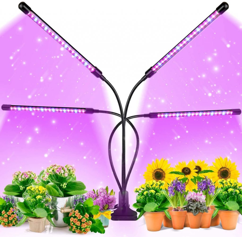 plant lights idea for gift on father's day